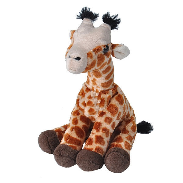 Giraffes and more giraffes